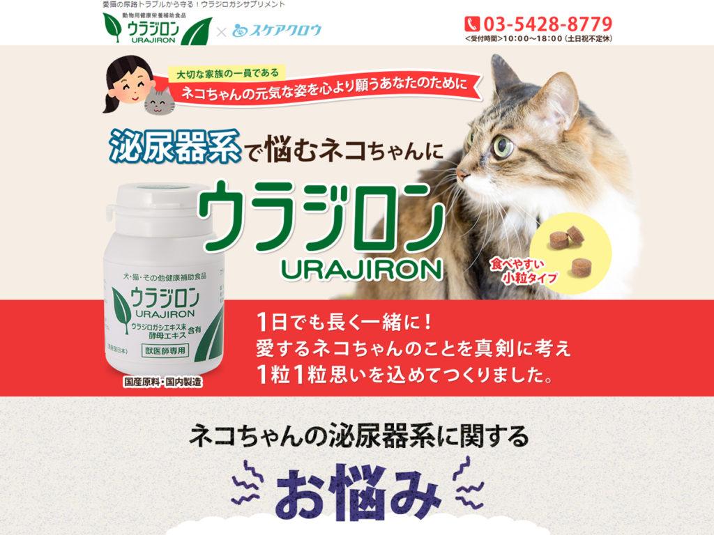 猫の尿路結石にウラジロン|愛猫の泌尿トラブルを救います